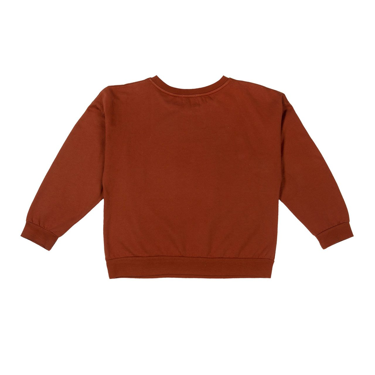 Brown-Sing-and-Whistle-Sweatshirt-back
