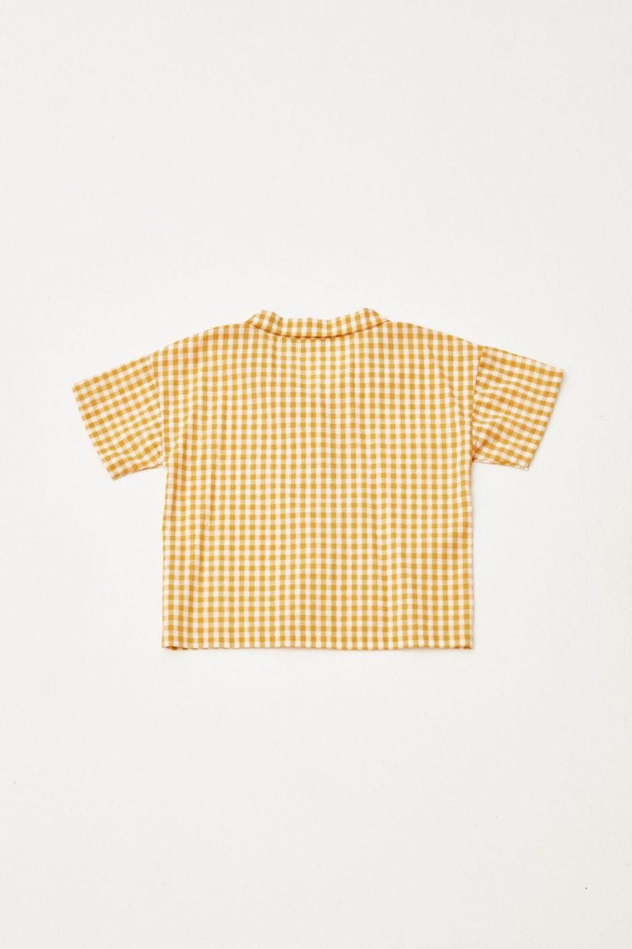 Checked Shirt back