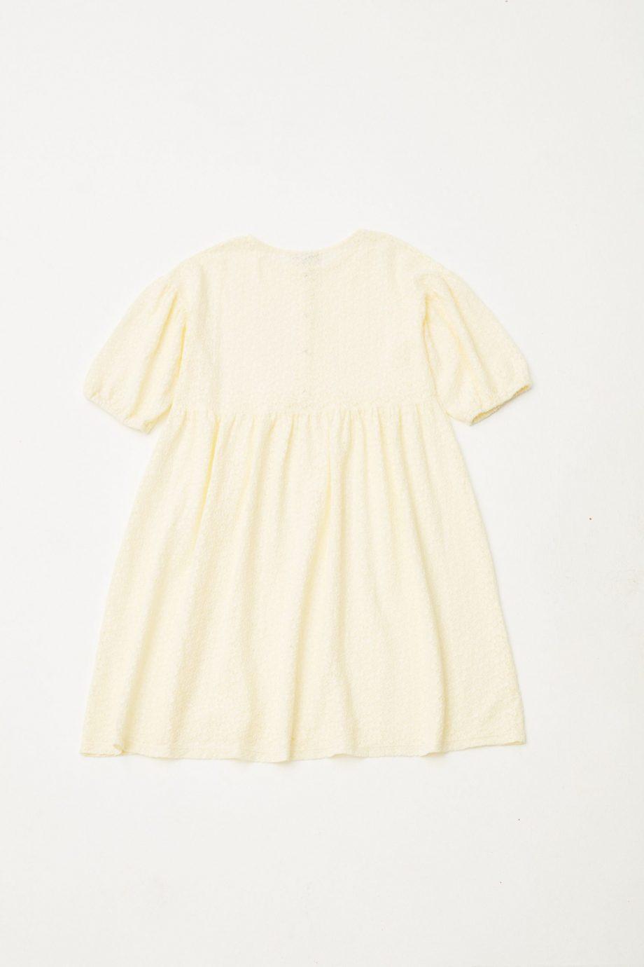 Lace Dress back